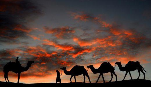 【世界史】遊牧民の歴史 ─「突厥」の流れを簡単に解説
